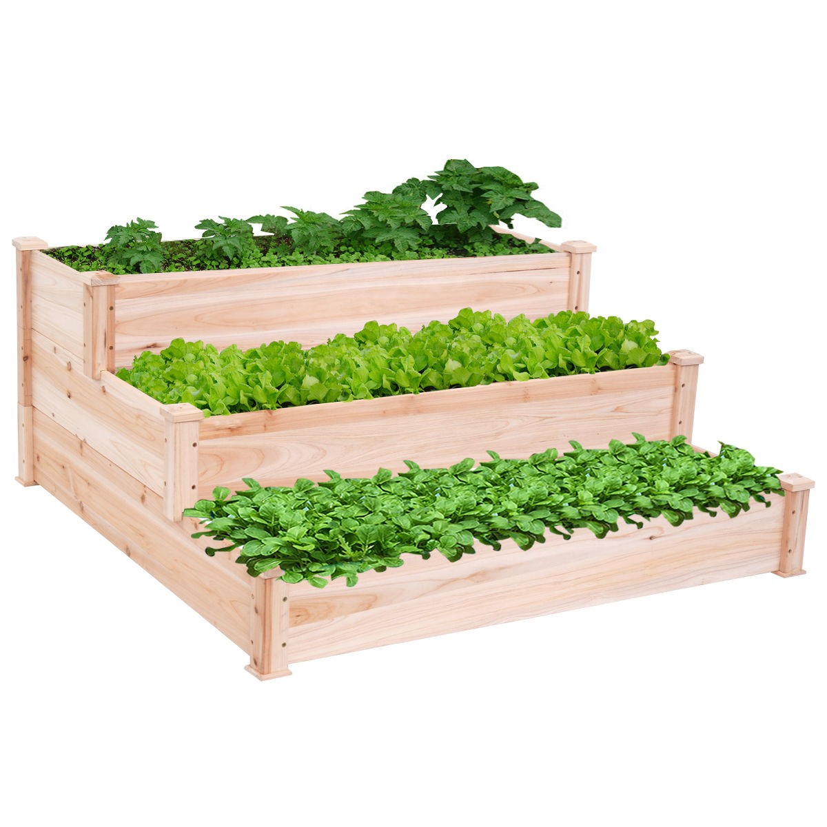 Outdoor wooden raised vegetable garden bed 3 tier elevated for Vegetable garden planter box designs
