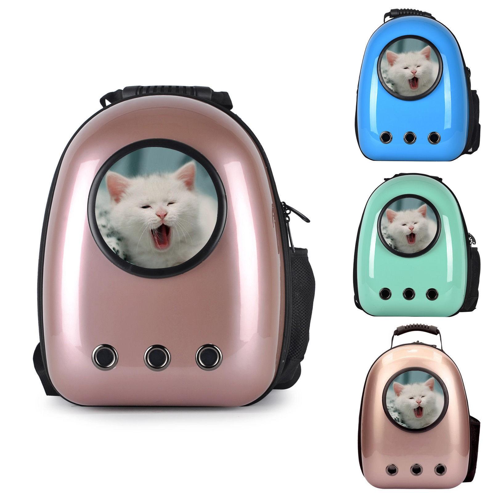ear mites cats treatment
