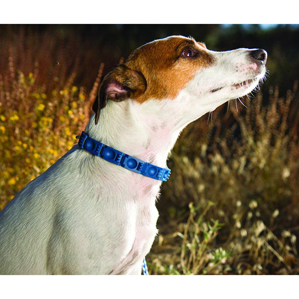 Don Sullivan Dog Training Videos